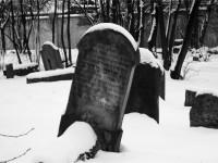 Después de la muerte
